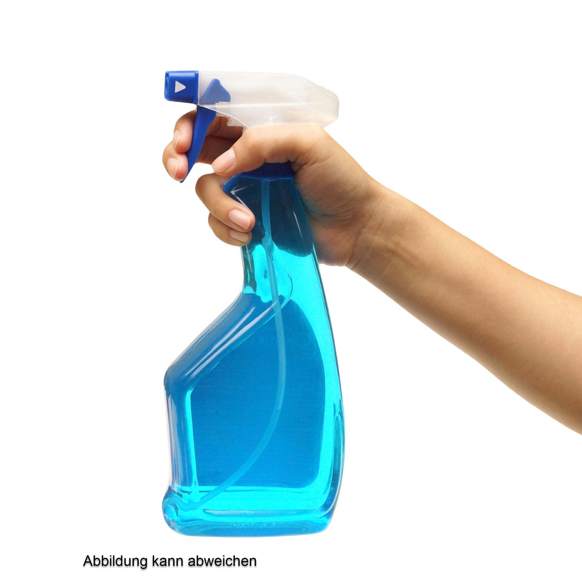 RR Glas shine - tensidfreier Glas- und Edelstahlreiniger - 500 ml Sprühflasche